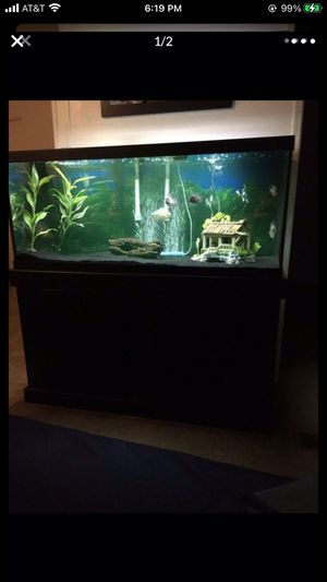 75 gallon fish tank with stand for Sale in Walnut, CA