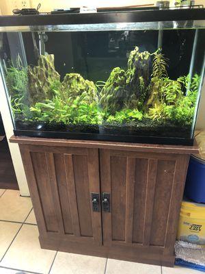 29 gallon aquarium for Sale in Fort Worth, TX