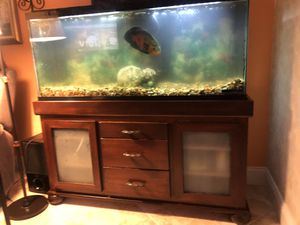 55 gallon fish tank and stand(fish included) $275 OBO for Sale in Miramar, FL