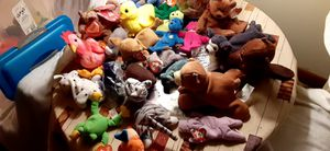 Assorted Beanie Babies for Sale in Lake Alfred, FL