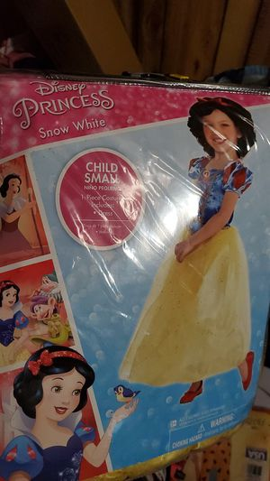Sleeping beauty small child costume sz 4-6 for Sale in Chicago, IL