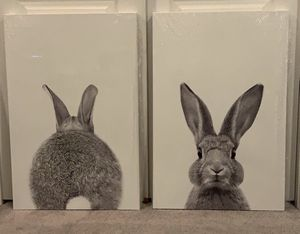 Bunny & Bunny Butt Canvas for Sale in Baltimore, MD