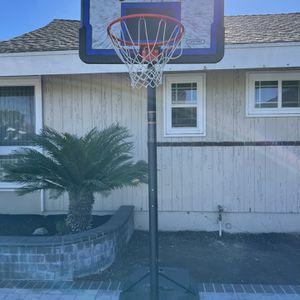 Lifetime Basket Ball Hoop for Sale in La Mirada, CA