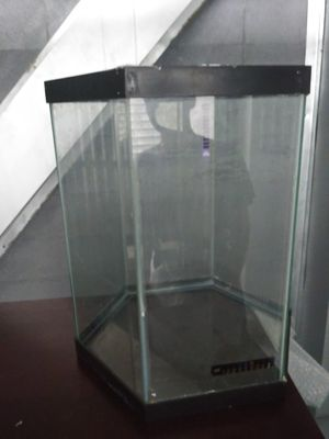 Aquarium for Sale in Brandon, FL
