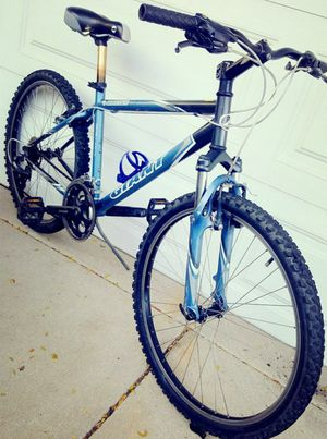 Giant Mountain bike 17 inches frame for Sale in Bensenville, IL