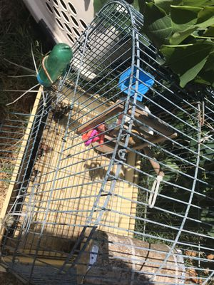 Bird cage with toys and food and water containers for Sale in Sacramento, CA