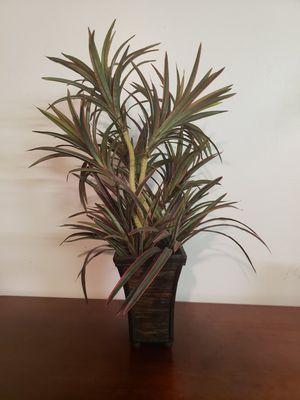 "Silk / Fake Plant in 8"" Basket for Sale in Plantation, FL"