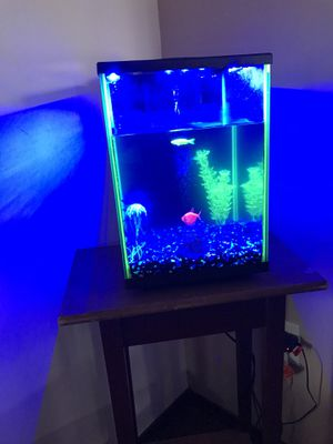 Glow fish fish tank and all for Sale in Wichita, KS