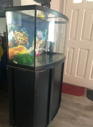60 gallon bowed fish tank with stand for Sale in Pittsburg, CA