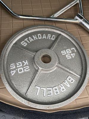 45 lb plate (1 plate) for Sale in Reston, VA