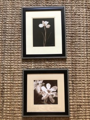 "Two professionally matted photos 12"" x 12"" and 12"" x 15"" for Sale in Los Angeles, CA"