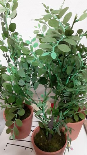 Set of three matching artificial Greenery plants in clay pots absolutely gorgeous great for indoor outdoor on a tabletop or Shelf for Sale in Oviedo, FL