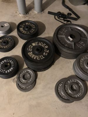 Swat rack / curl bar / flat bench/weights for Sale in Phoenixville, PA