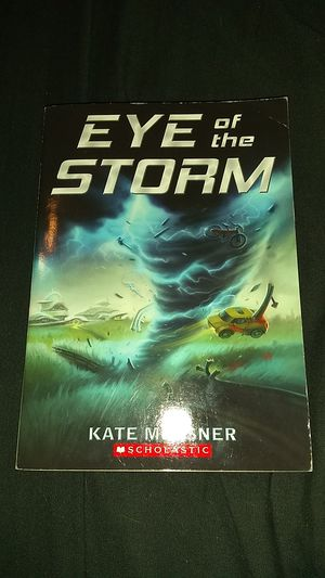 Eye of the Storm for Sale in Sanford, FL