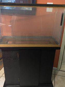 29 Gallon Fish Tank With Stand for Sale in Tampa,  FL