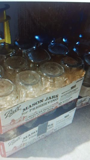 Canning Jars for Sale in Fallston, MD