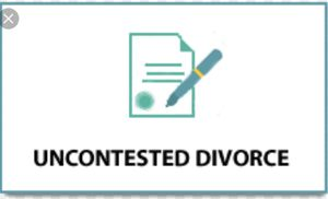 Divorce Packet $175 for Sale in Durham, NC