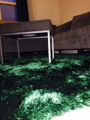 Green Rug by Z Gallerie for Sale in North Bethesda, MD