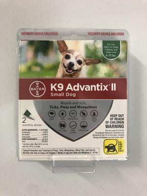Puppy kit for Sale in Orlando, FL