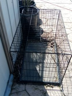 Dog Kennel for Sale in Antioch,  CA