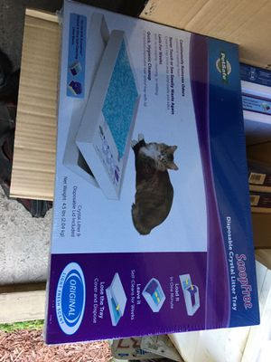1 x box scoop free litter tray for Sale in Maynard, MA