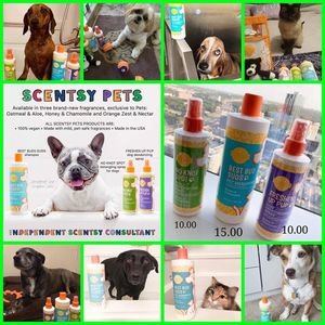 Pet products for Sale in Elgin, SC