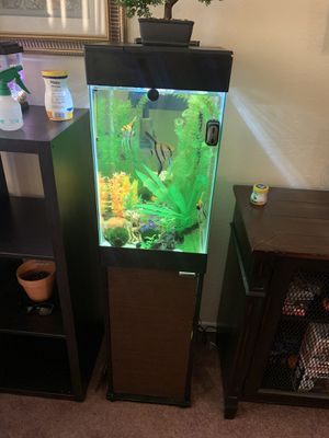 15 gallon fish tank with filter+ stand NO FISH or DECORATIONS for Sale in Hawthorne, CA