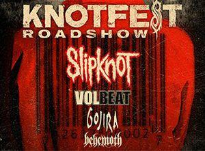1 Ticket VIP Knotfest Austin for Sale in San Antonio, TX