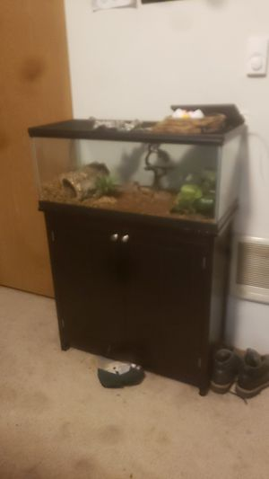 20 gallon long set up for Sale in Spanaway, WA