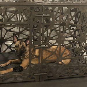 High End Dog Crate for Sale in Atlanta, GA