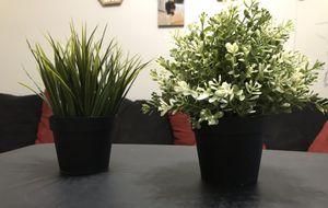2 Artificial potted plants for Sale in Scottsdale, AZ