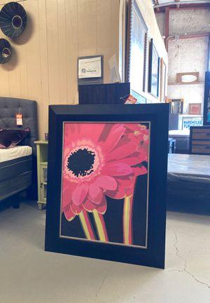 Picture for Sale in Cibolo, TX
