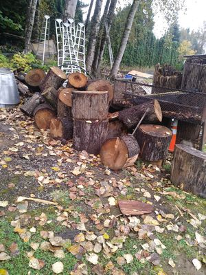 Wood for Sale in Renton, WA