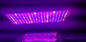 Bestva 2000w LED Dual Switch Grow Light for Sale in Bakersfield, CA