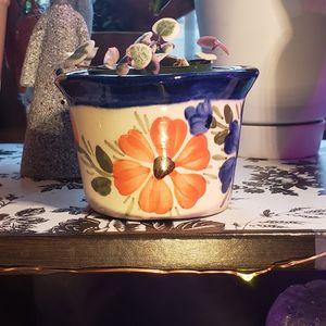 "Pot 2"" for Sale in Fontana, CA"