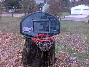 Basketball Hoop! for Sale in Ontario, OH