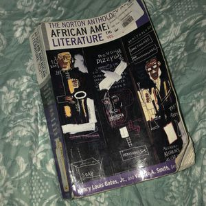 Norton Anthology Volume I and II for Sale in Chicago, IL