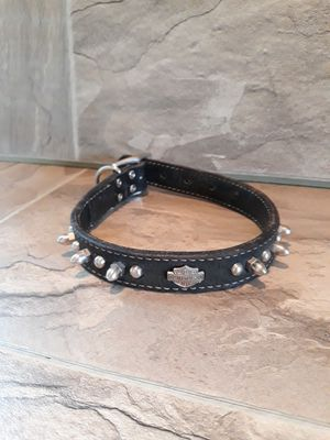 Harley Davidson Black Leather Dog Collar with Metal Studs and Emblem Small - Medium Dog for Sale in Glen Burnie, MD