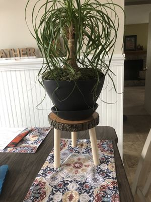 Wooden plant holders for Sale in Plainfield, IL