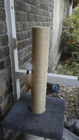 Cat. Scratching Post for Sale in Melbourne, FL