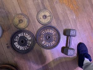 Weights weider 25lbs , 5lbs , 25lbs dumbbell for Sale in Queens, NY