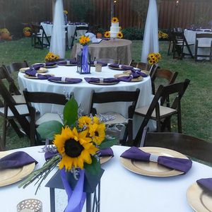 Linens Weddings and Events for Sale in Dallas, TX