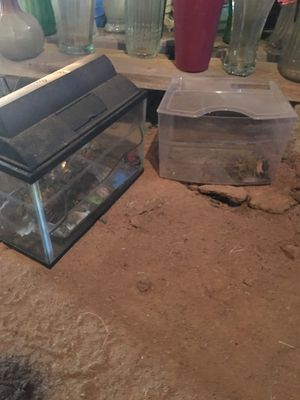 Fish tanks and accessories for Sale in Oklahoma City, OK