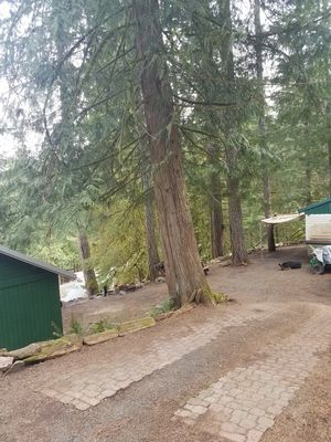 Site at Lake Merwin Campers Hideaway for Sale in Amboy, WA