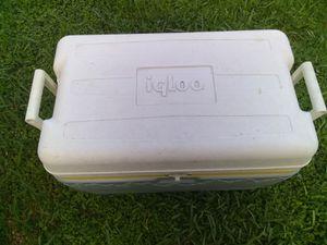 Igloo Cooler for Sale in Homestead, FL