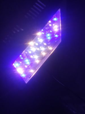 Apelila grow led grow light for Sale in Pryor, OK