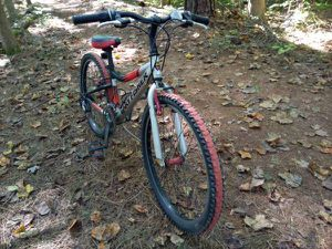 24in Gary Fisher Tyro 21 Speed Mountain Bicycle for Sale in Chapel Hill, NC