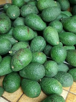 Fresh Ass Aguacates for Sale in Bakersfield,  CA