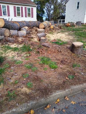 Free wood for Sale in Richmond, VA