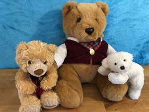 Teddy Bear Family for Sale in Everett, WA